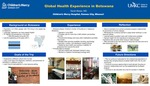 Global Health Experience in Botswana