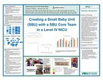 Improving Care of the Small Baby