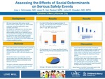 Assessing the Effects of Social Determinants on Serious Safety Events