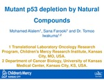 Mutant p53 Depletion by Natural Compounds by Mohamed A.A. Alalem, Sana Farooki, and Tomoo Iwakuma